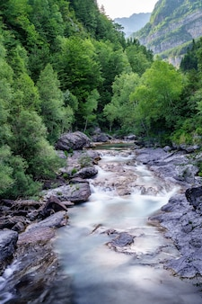 Landscape with river and forest with green trees. silky crystal water and long exposure. ordesa pyrenees.