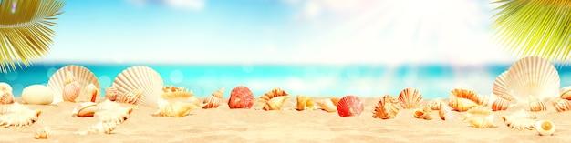 열 대 해변-여름 휴가에 조개와 풍경.