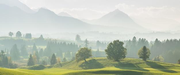 언덕에 나무와 거리의 아름다운 산 풍경