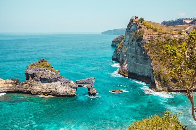 Пейзаж с тропическими растениями, скалы, берега острова нуса пенида, недалеко от бали, индонезия, океанские волны