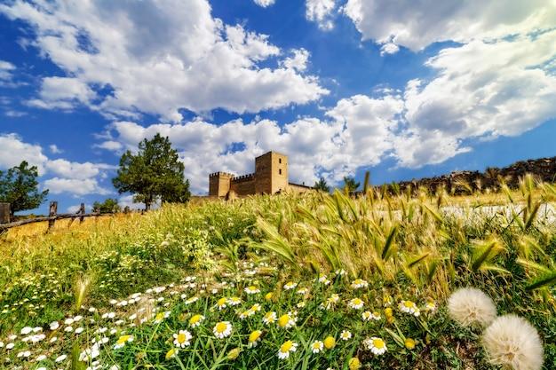 Пейзаж с разноцветными полевыми цветами, шипами и деревьями. средневековый замок на поверхности на горизонте, голубое небо с белыми облаками. педраса, сеговия. испания.