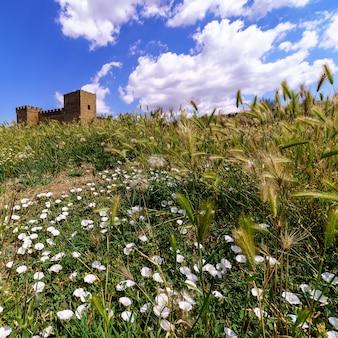 Пейзаж с разноцветными полевыми цветами, шипами и деревьями. средневековый замок на горизонте, голубое небо с белыми облаками. педраса, сеговия. испания.