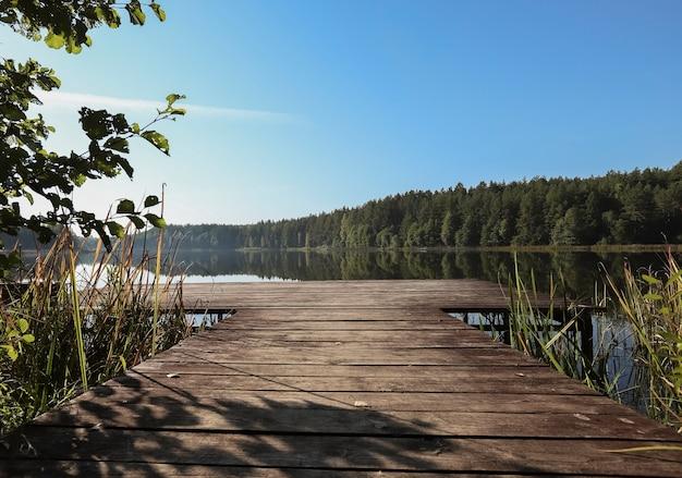 Пейзаж с длинной деревянной пристанью в перспективном озерном лесу на горизонте и ясным голубым небом летом