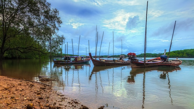 풍경 어촌 근처 맹그로브 숲에 주차 된 어선