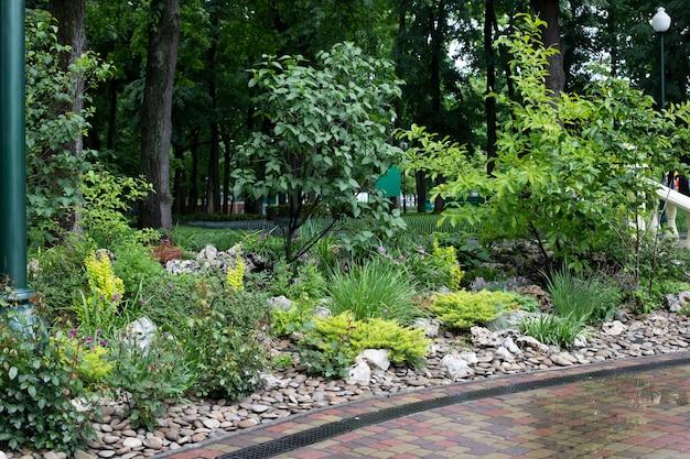 공원의 조경, 다른 수풀 및 녹색 식물