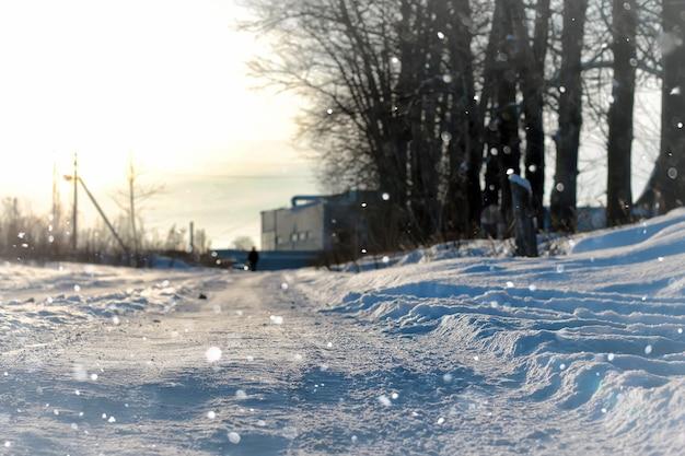 Lanscape 골목 나무 겨울