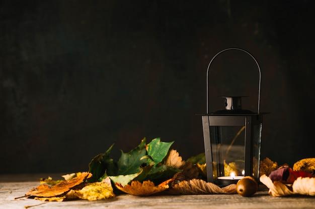 Lantern in dry leaves