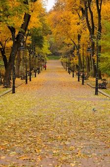 Lantern in the park autumn