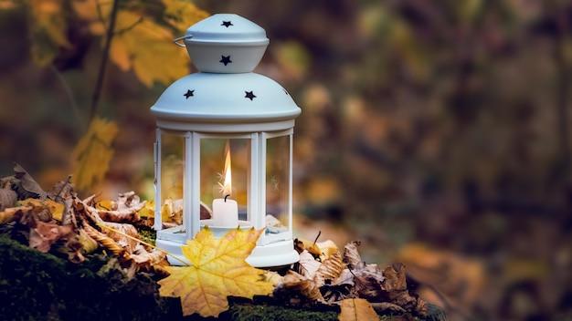 夕方の落ち葉に囲まれた紅葉の森にキャンドルを灯した提灯