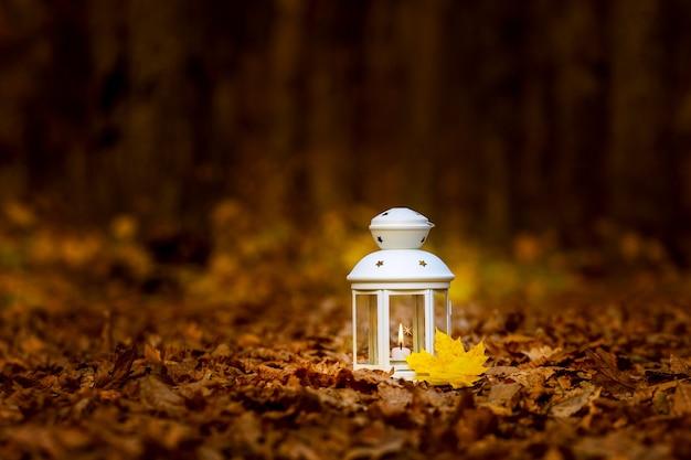 夜の乾燥した葉の間の森の中でキャンドルとランタン