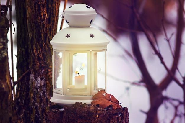夕方の木の近くの森のキャンドルとランタン。ランタンライトと森のクリスマスの夜
