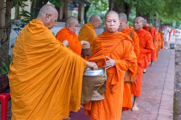 Laos monks walks in the early morning to receive food offering along the street in luang p