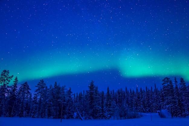 라플란드. 밤. 겨울 숲. 별이 빛나는 하늘과 오로라