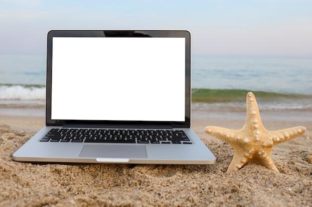 Ноутбук и морские звезды на песке на пляже летом на заднем плане с белым экраном.
