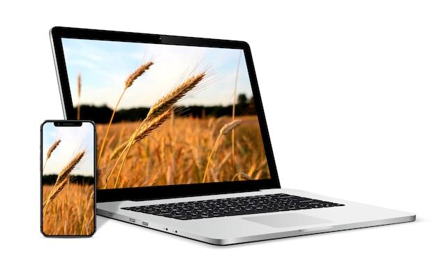 画面上の麦畑の風景とラップトップコンピューターとスマートフォン