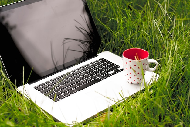 Laptop computer with cup of coffee on green grass