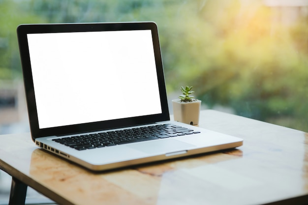 Laptop and green plant on wooden table