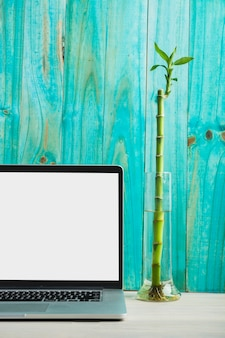 Laptop with blank white screen in front of turquoise colored wooden wall