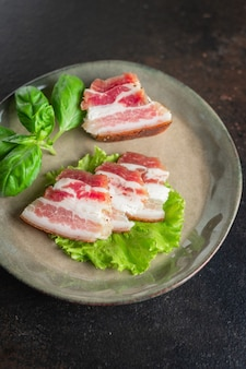 Lard salted raw pork fat homemade meal snack on the table copy space food background rustic