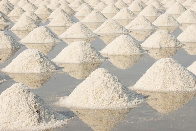 畑には大量の塩がたまっています。