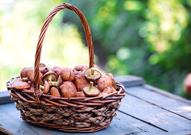 Large basket with mushrooms