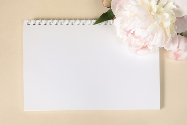Large beigepink peony flower and springloaded notebook on light paper background