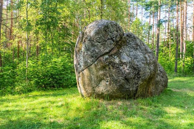 숲에있는 큰 돌맹이. 큰 바위