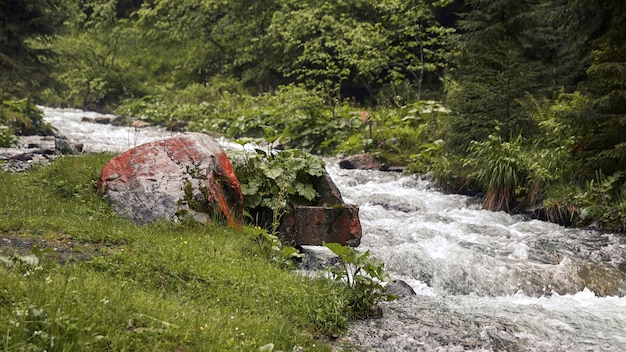 A large boulder near river view