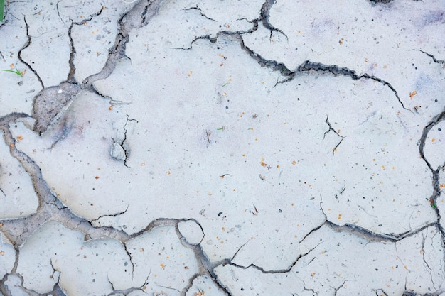 Large cracks in the ground near dry bodies of water in the dry season.