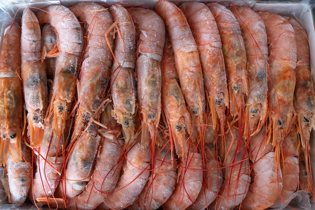 Large frozen langoustines in a package. seafood.