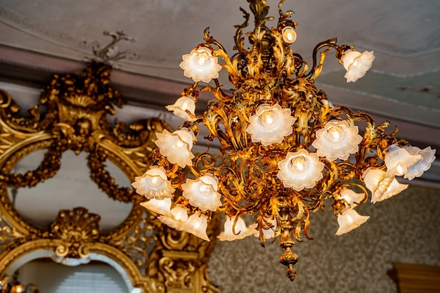 Large golden chandelier with floral shades and floristic style bulbs against the background of an