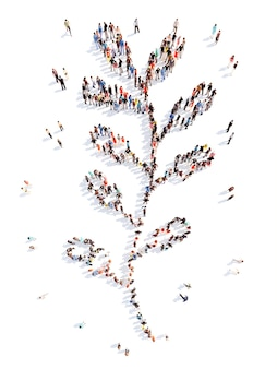Large group of people in the form of a leaf of a flower isolated white background