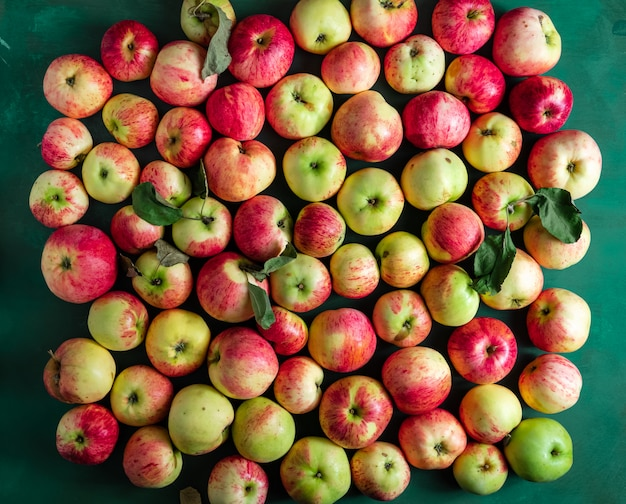 Large group of ripe apples