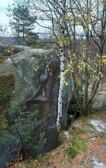 秋の森にある大きな高尚な石(「skelidovbusha」、イバノフランコフスク地方、ウクライナ)