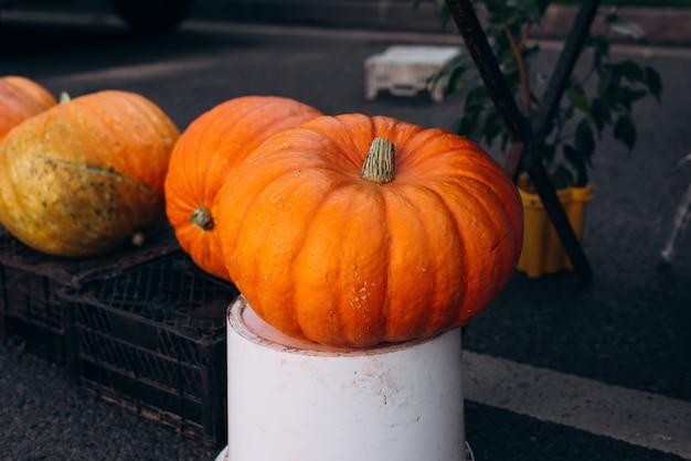 Продажа больших оранжевых тыкв на уличном рынке. селективный акцент на передней тыкве. символ октября, хэллоуин