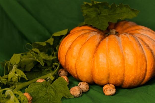 Большая оранжевая тыква с листьями и орехами лежит на зеленом фоне. фото высокого качества