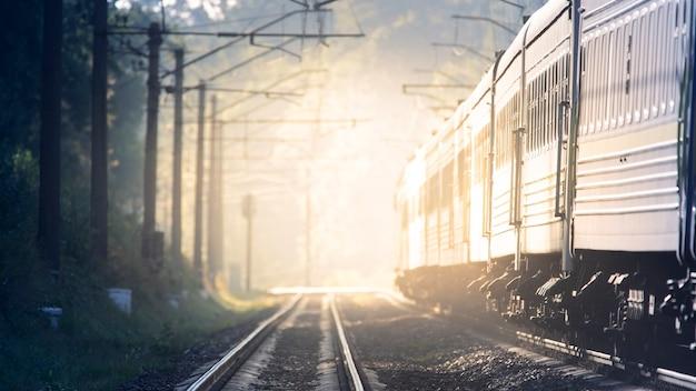 大型客車が夜明けに向かっている