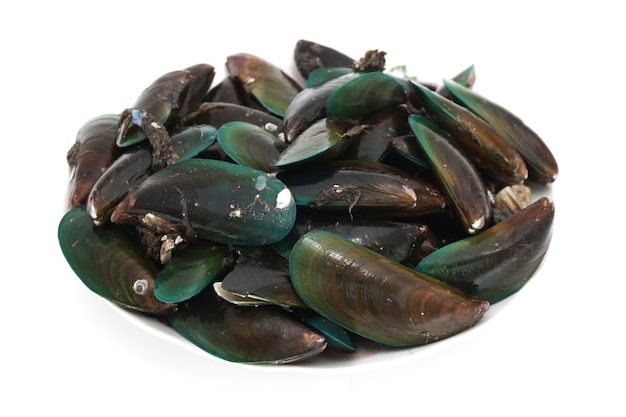 A large pile of raw mussels isolated on white background, popular seafood in thailand.