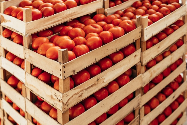 A large pile of tomato basket.