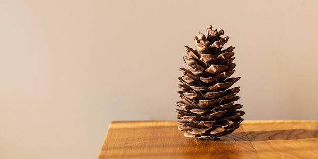 자연 채광에 나무 테이블에 큰 소나무 콘. 미니멀리즘. 에코 개념.