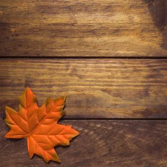 Large pretty orange autumn maple leaf