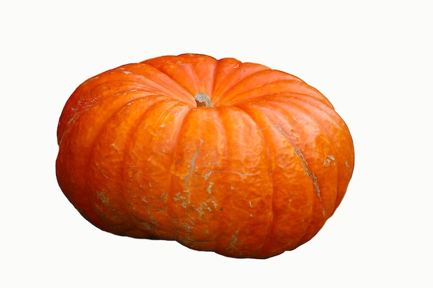 Large pumpkin isolated over white