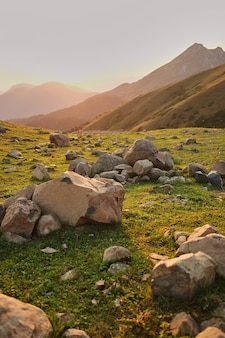 Large quartz rocks on a mountain meadow. sunset in the mountains.