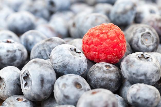 Крупная спелая черника, лежащая в куче после сбора урожая, на ягодах красная малина