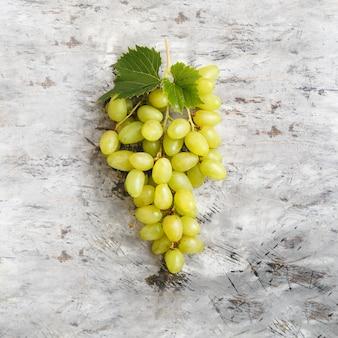 밝은 회색 콘크리트에 포도 나무 단풍으로 큰 익은 녹색 리슬링 포도 grone 익은 달콤한 포도