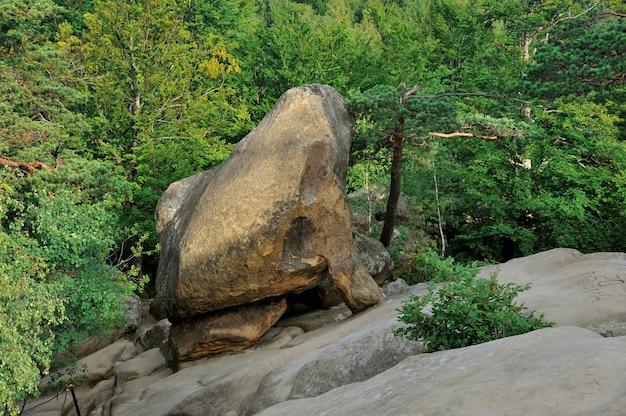 아침 햇살에 숲 한가운데에 큰 바위. carpathians, 우크라이나에서 dovbush 절벽.