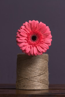 A large skein of brown twine with daisy flower