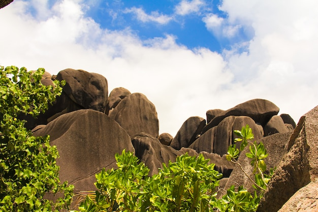 Large smooth monumental boulders in the seychelles