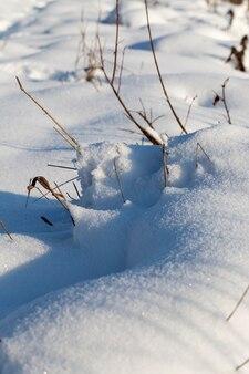 降雪や吹雪の後の大きな雪の吹きだまり、寒い気候と雪の形での降水量の多い冬の季節