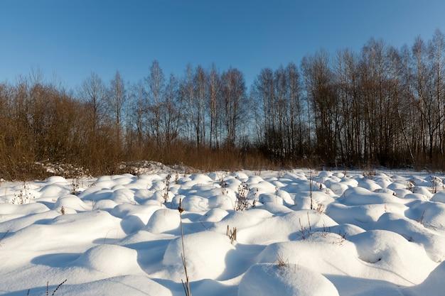 大きな雪の吹きだまり